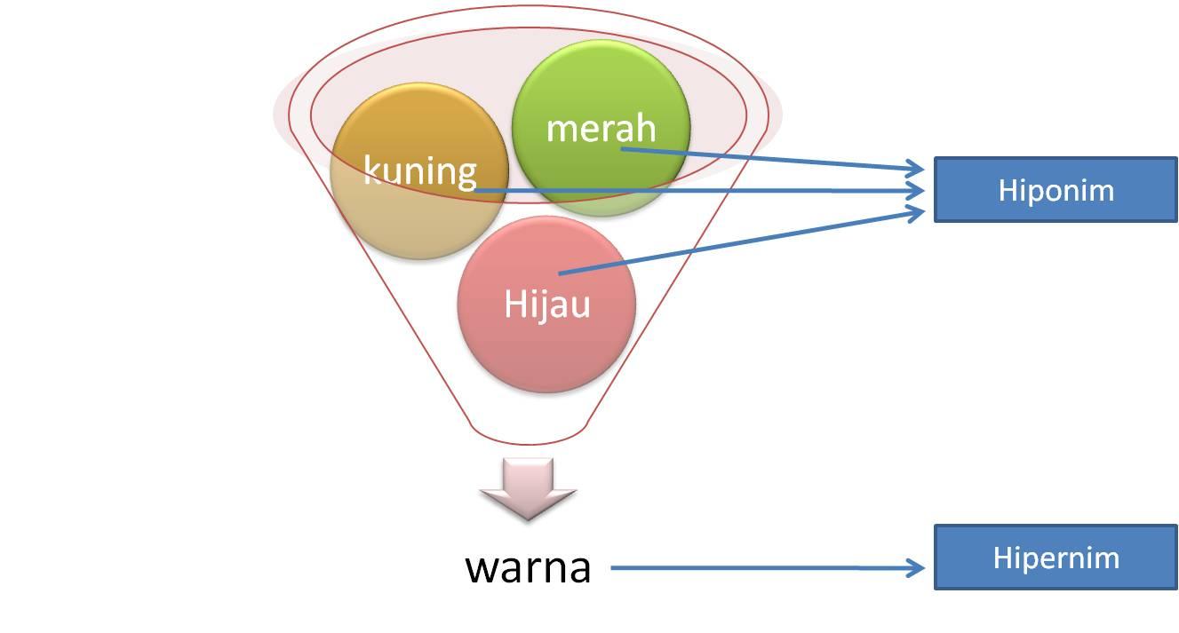 Hubungan antar hiponim (merah, kuniing hijau) disebut kohiponim.