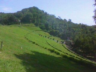 lereng bukit sebelah Utara Waduk AMalahayu