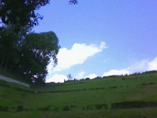 lereng bukit Waduk Malahayu dilihat dari bawah