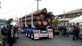 Ternyata ada juga yang menampilkan keseluruhan badan truk beserta muatannya.